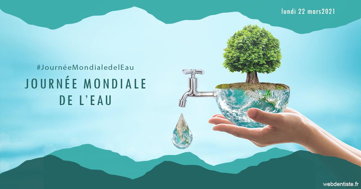 https://dr-halb-luc-joseph.chirurgiens-dentistes.fr/Journée de l'eau 1
